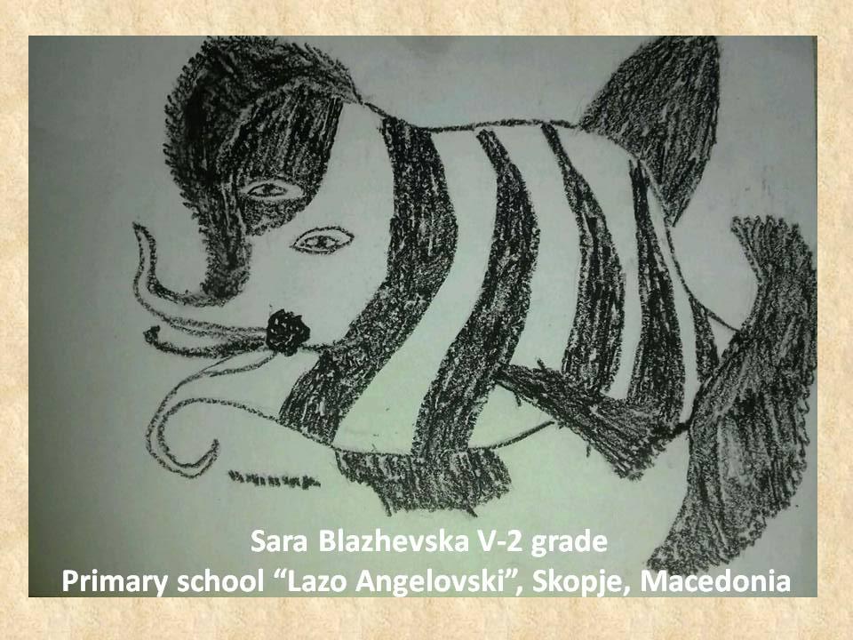 Nuri Abach art lesson-drawings V grade (14)
