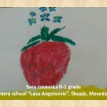 Stefan Luchian art lesson-drawings II grade (7)