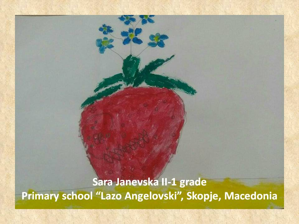 Stefan Luchian art lesson-drawings II grade (7)