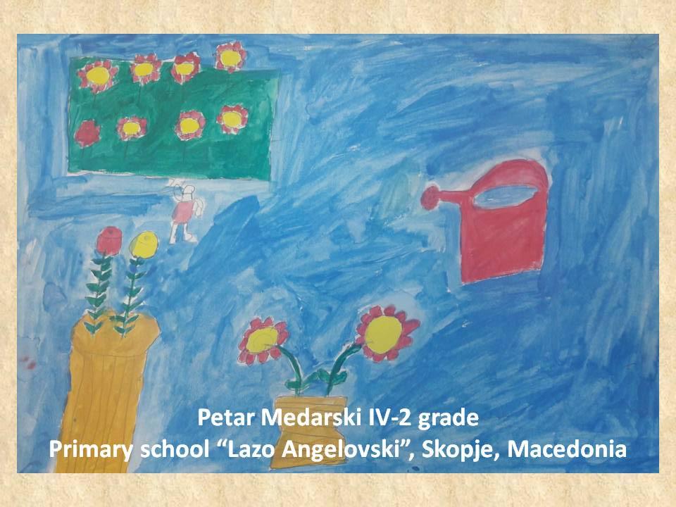Stefan Luchian art lesson-drawings IV grade (29)