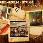3 NatureMuseum-Struga