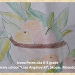 Lazar Lichenovski art lesson-drawings II grade (12)