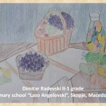 Lazar Lichenovski art lesson-drawings II grade (7)