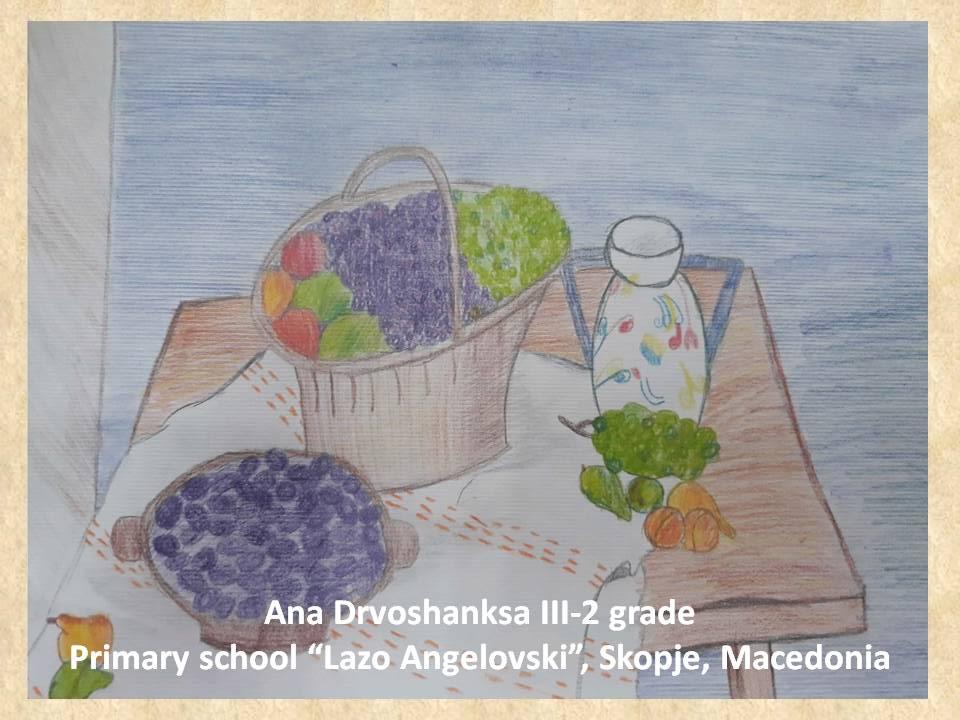 Lazar Lichenovski art lesson-drawings III grade (2)