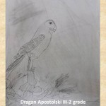 Filippo Palizzi art lesson-drawings III grade (22)