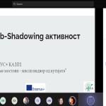job-shadowing (1)